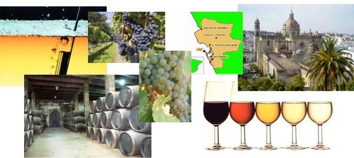 第148回 スペインワインを楽しむ会「スペインワインを楽しむ会」この秋はヘレスから!