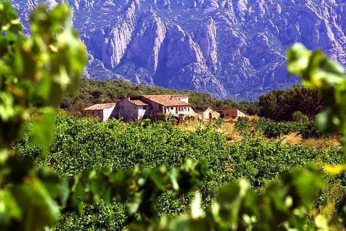 第151回 スペインワインを楽しむ会「カタルニアの魅力をじっくり楽しもう!」